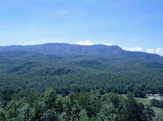 Deer Ridge Mountain Resort : View from Balcony 302
