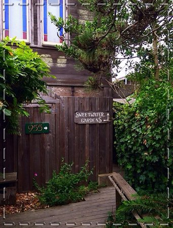 The 955 Ukiah Street Restaurant: Path to the restaurant