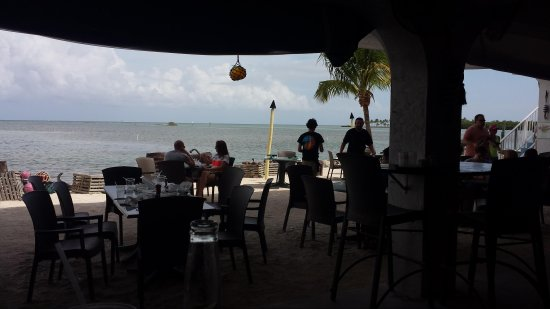 Lazy Days looking out from table.