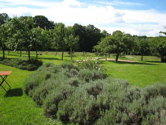 La Reserve : The gardens