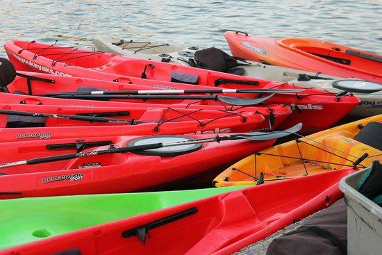 Bayou Paddlesports