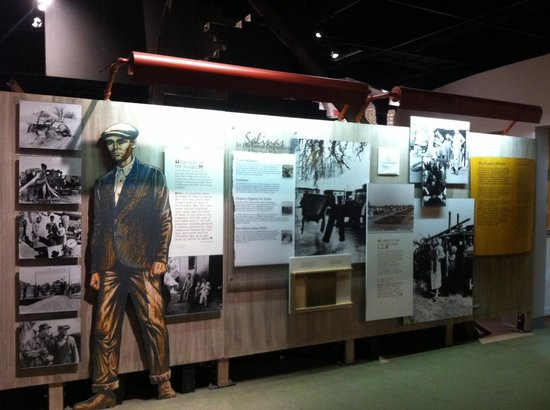 National Steinbeck Center: Grapes of Wrath display wall (1 of 2)