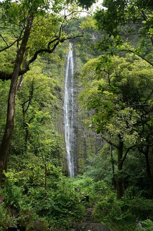 Pipiwai Trail : Waterfall