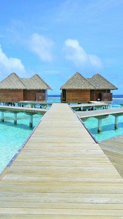 Kandolhu Maldives: Beautiful