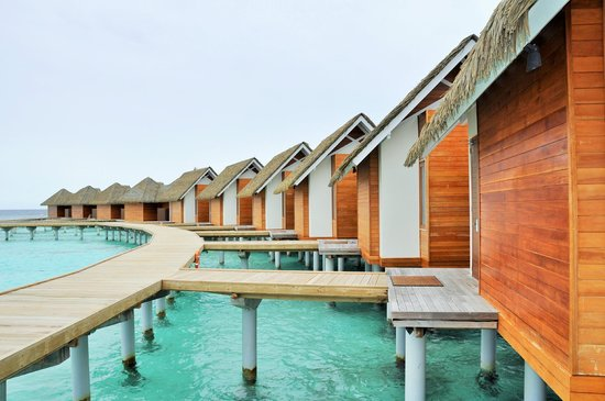 North Ari Atoll: Water Pool Villas