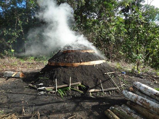 San Pedro Lodge: Fabricando carbón en comunidad