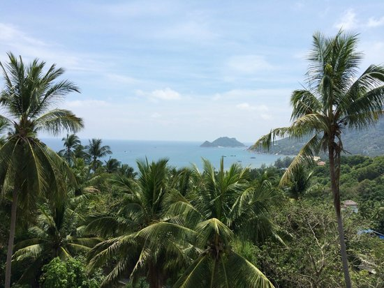 Koh Tao Heights Exclusive Apartments: Ausblick