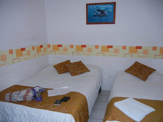 Galapagos Best Hostel: La habitación