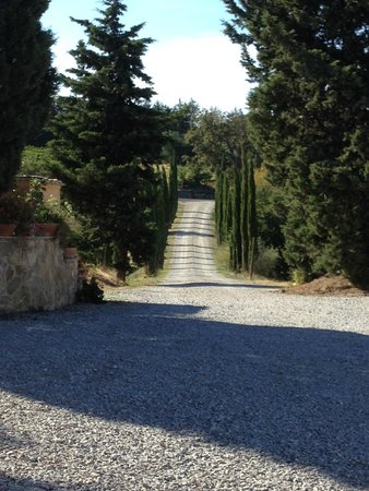 Franco Wine Tour Experience : La Rasina Winery