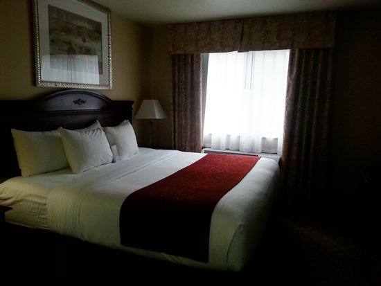 Comfort Inn Newport: room
