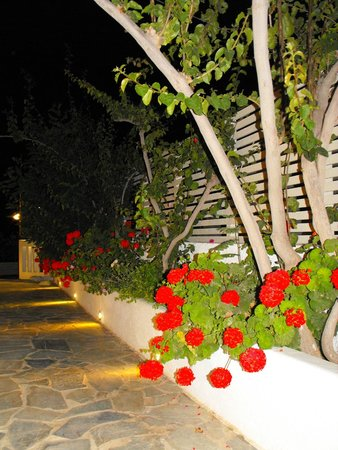 Bellonias Villas: In front of the Reception