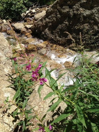 Boulder Creek RV Resort: Creek