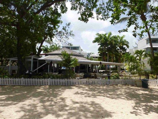 Savannah Beach Hotel: Drifters from beach