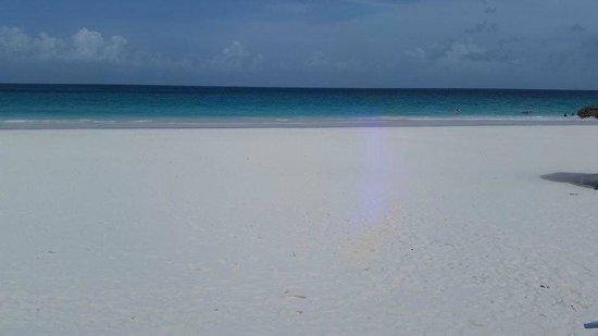 Pink Sands Beach: Pink Sand Beach 3