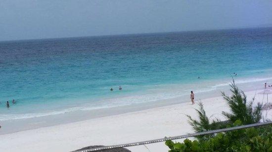 Pink Sands Beach: Pink Sand Beach 5