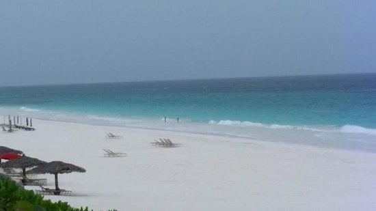 Pink Sands Beach: Pink Sand Beach 1