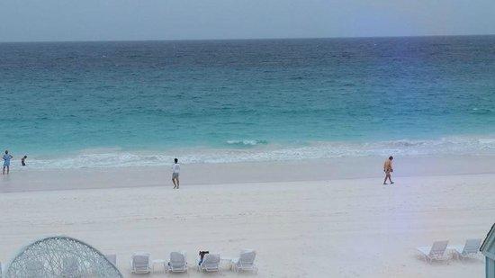 Pink Sands Beach: Pink Sand Beach 4