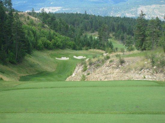 Predator Ridge Golf Resort: Great hole!