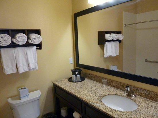 La Quinta Inn & Suites at Zion Park / Springdale : aseo