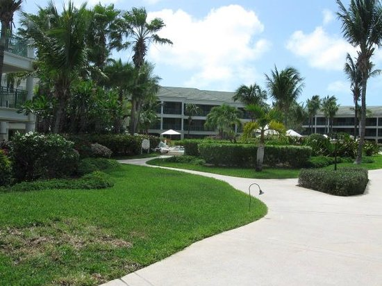 Sands at Grace Bay : View of inside grounds