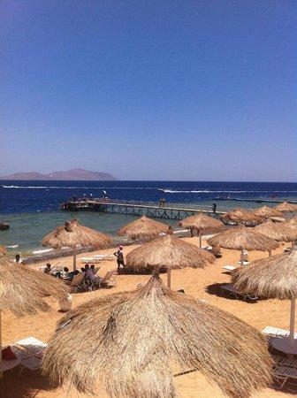SUNRISE Arabian Beach Resort -Grand Select- : 1