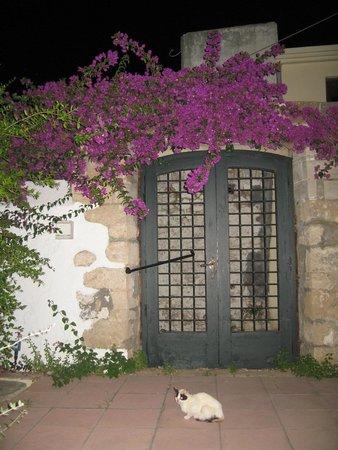 Κoutouloufari Village Holiday Club : terras