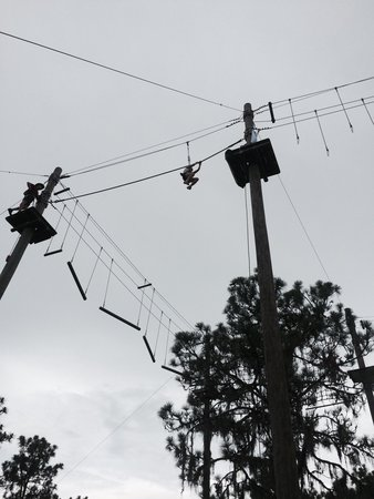 TreeUmph! Adventure Course : Awesome day. Course 5 my daughter going solo. Highly recommend the place for the whole family