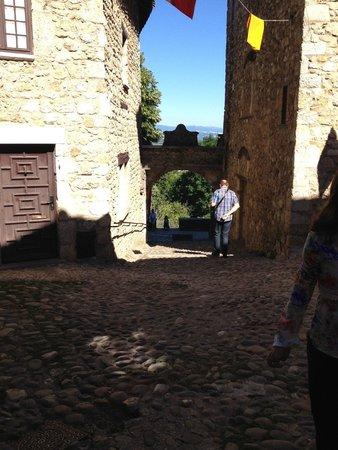 Cite medievale: Cobbled streets