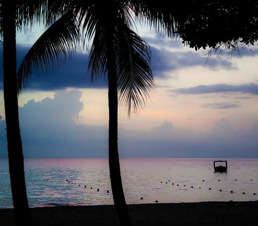 Nirvana on the Beach: credit Anya Durell Photography