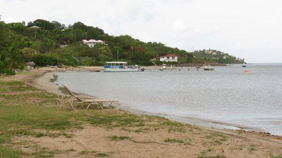 Oualie Beach Resort: Oualie Beach Front