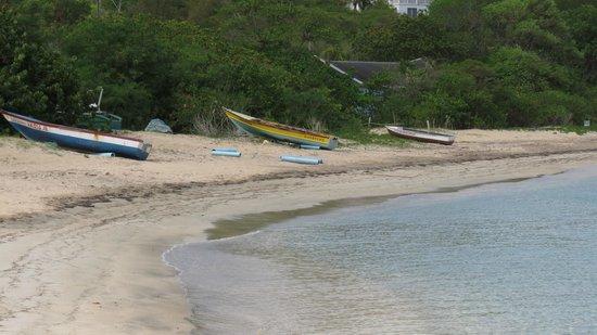 Oualie Beach Resort: Beach Front