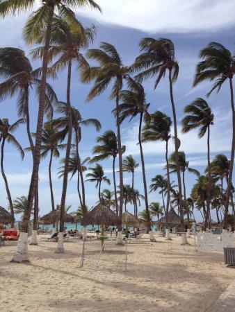 The Beach Bar: Beautiful place