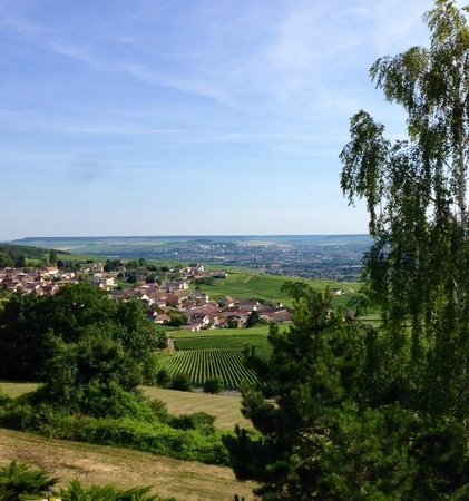 Royal Champagne : View of Champillon and Epernay from rooms