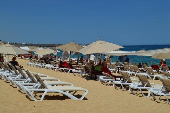 Medano Beach: nice beach