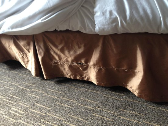 Wyndham Grand Pittsburgh Downtown: Torn bedding