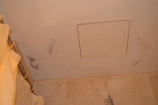 Balboa Bay Resort: Mildew on tub/shower ceiling