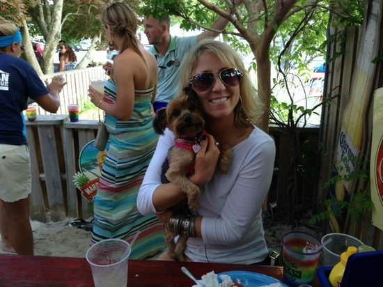 Dog Friendly Outdoor Area Picture Of Purple Parrot Grill Rehoboth