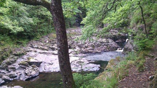Bod Gwynedd Bed & Breakfast: Riverside walk. Breathtaking