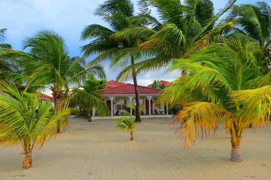 The Placencia Hotel and Residences: Beachfront rooms