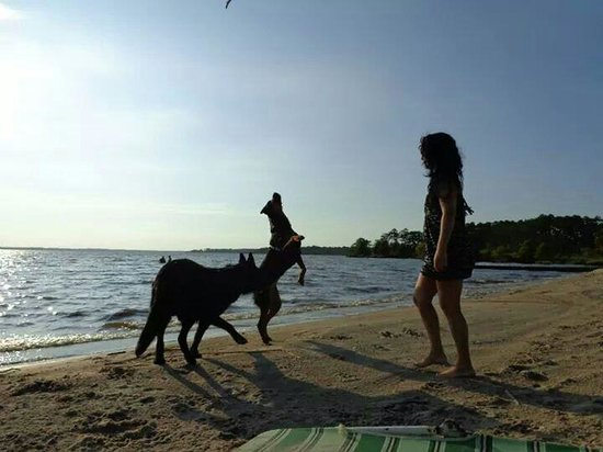 North Landing Beach Campground & RV Resort: My dogs and I on the beach