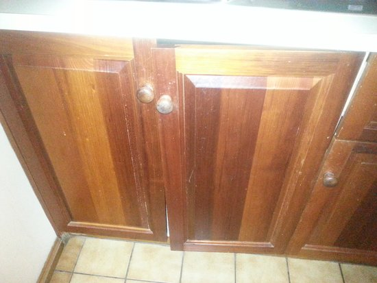 Rydges Hotel Hobart: Cupboard door under sink.