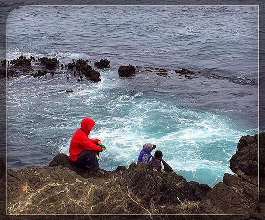 Mendocino Headlands State Park: Watching the waves