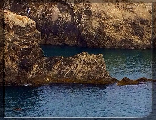 Mendocino Headlands State Park: Rocks and water
