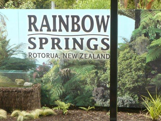 Rainbow Springs Nature Park : rainbow springs
