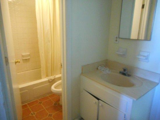 Calypso Motor Inn: small bathroom