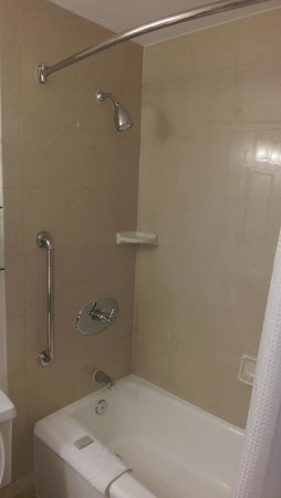 Renaissance Newark Airport Hotel: Bathroom