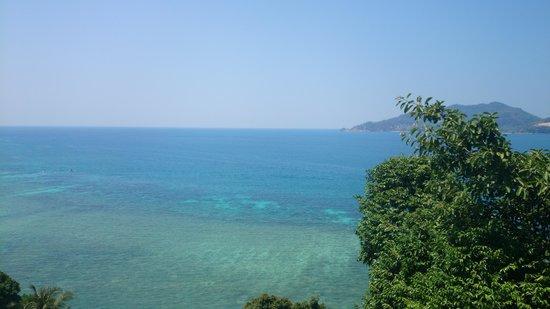 Blue Ocean Beach Resort: вид из того же номера