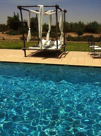 Riad Couleur Sable : La piscine et ses lits balinais pour profiter du soleil…