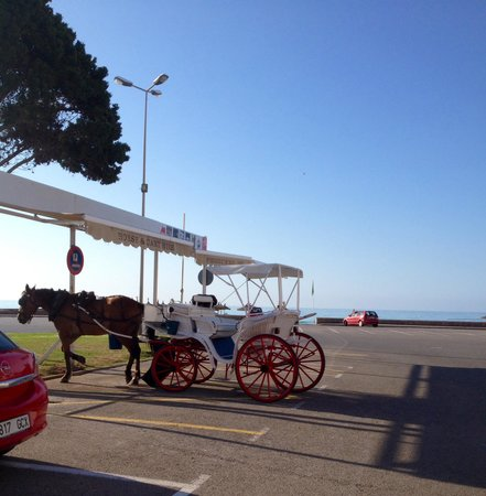 Hipotels Coma Gran Aparthotel : Horse and cart by beach front