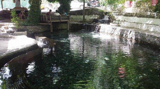Imparator Hotel: trout farm